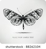 Butterfly Hand Drawing.vector