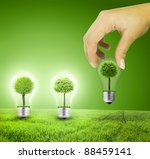 Scene Of The Hand Plant Tree I...