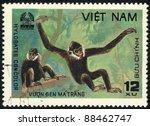 vietnam   circa 1981  a stamp... | Shutterstock . vector #88462747