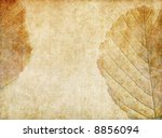 lovely brown background image... | Shutterstock . vector #8856094