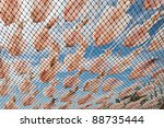 dry squids by sunshine | Shutterstock . vector #88735444