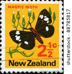 Small photo of NEW ZEALAND - CIRCA 1970: A stamp printed in New Zealand shows Magpie moth, Nyctemera - Abraxas grossulariata or Small Magpie (Eurrhypara hortulata), series, circa 1970