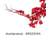 Beautiful Branch With Red...