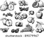fruit | Shutterstock .eps vector #89079967