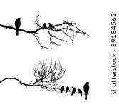 vector silhouette of the birds... | Shutterstock . vector #89184562