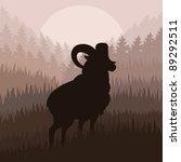 Mountain Sheep In Wild Nature...