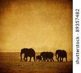 Elephant's Family  Amboseli ...
