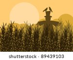 Scarecrow In Corn Field Autumn...