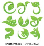vector collection of leaves...