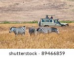 tourists watching  zebras from... | Shutterstock . vector #89466859