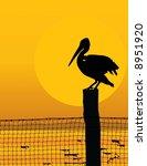 Black Silhouette Of A Pelican...