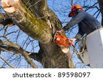 A Tree Surgeon Cuts And Trims ...