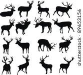 wild deer | Shutterstock .eps vector #89653156