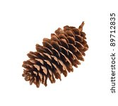 Fir Cone On The White Isolated...