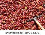 fresh coffee beans before roast ... | Shutterstock . vector #89735371