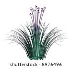 garlic grass design feature...   Shutterstock . vector #8976496