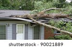 an white oak tree falls on a... | Shutterstock . vector #90021889