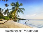 Coconut Tree And Sea In Thailand