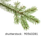 fir branch isolated over the... | Shutterstock . vector #90563281