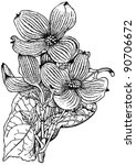 plant cornus florida  flowering ...   Shutterstock .eps vector #90706672