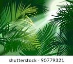 jungle rain forest  tropical...