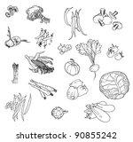 autumn abundance of fresh... | Shutterstock .eps vector #90855242