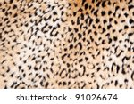 Animal Print Background