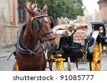 Horse Carriage In Seville ...