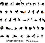 animals | Shutterstock .eps vector #9113611