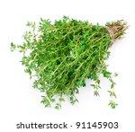 thyme | Shutterstock . vector #91145903