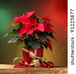 Beautiful Poinsettia In...