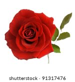 Stock photo red rose with leaves isolated on white 91317476
