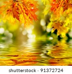 Stock photo colorful autumn leaves reflecting in the water 91372724