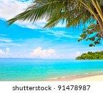 Summer Beach   Palm Tree ...