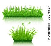 2 grass border  isolated on... | Shutterstock . vector #91675814