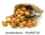 fresh pearl onions in a burlap...