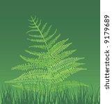 vector illustration of fern... | Shutterstock .eps vector #9179689