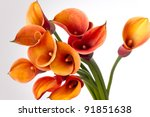 Bouquet Of Orange Calla Lily ...