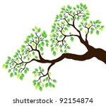 tree branch with green leaves 1 ... | Shutterstock .eps vector #92154874