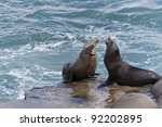 california sea lions on the... | Shutterstock . vector #92202895