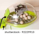 Small modern incubator for various egg sizes with turning motor and ventilation - stock photo