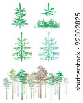 Collection Of Conifers  Vector