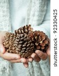 Hand Holding Cedar Cone
