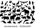 contour images of fauna on the... | Shutterstock . vector #92361649