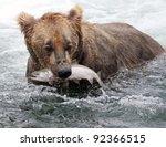 An Alaskan Brown Bear Fishing...