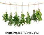 fresh herbs hanging isolated on ... | Shutterstock . vector #92469142