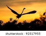 Silhouette Of White Egret Flying