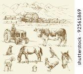 Farm   Hand Drawn Collection