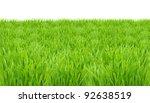 springtime  fresh green grass... | Shutterstock . vector #92638519