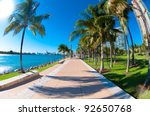 walkway in a the beautiful park ... | Shutterstock . vector #92650768